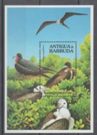 ANTIGUA  **  MNH   1990  **   MNH  YVERT  BLO 189   VALOR    8 €   PAJAROS - Antigua Y Barbuda (1981-...)