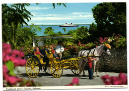 Bahamas - Traditional Surrey Nassau - Bahamas