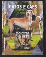 Mozambique 2016 Dog Chien Cat MNH 1SS ** - Mozambique