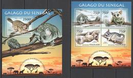 TG610 2013 TOGO TOGOLAISE WILD FAUNA OF AFRICA WILD ANIMALS GALAGO FROM SENEGAL KB+BL MNH - Monkeys