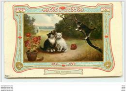 N°2279 - Entourage Gaufré - Two's Company - Chats Regardant Un Chaton Sur Une Branche D'arbre - Gatos
