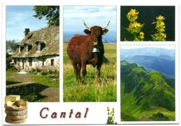 Cantal - Zonder Classificatie