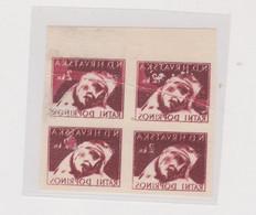 CROATIA WW II, War Relief 2 Kn Nice Proof  Bloc Of 4 Breakthrough Printing + Falte - Croacia