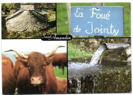 Saint-Amandin (Cantal) - Le Four Banal - La Fontaine De Jointy - La Belle Salers - Zonder Classificatie