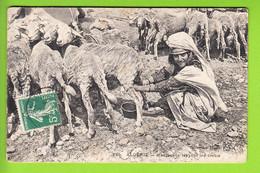 Mauresque Trayant Les Brebis. Algérie.  2 Scans.  Edition Idéal - Donne