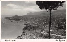 R545091 Funchal. Madeira. Figueiras - Mondo