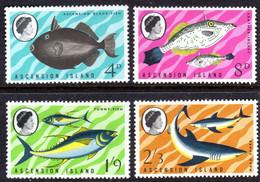 ASCENSION - 1968 FISHES 1ST SERIES SET (4V) FINE MNH ** SG 113-116 - Ascension