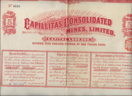 CAPILLITAS CONSOLIDATED MINES ,LIMITED -ANNEE 1909 - Mineral