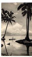 Dans Le Sillage De BOUGAINVILLE TONGA Ile Des Amis - Tonga