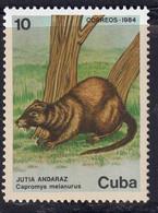 CUBA - Faune, Escargot, Jubo, Almiqui, Jutia Andaraz - 1984 - MNH - Non Classés