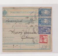 SLOVENIA, SHS 1919 RACE KRANICHSFELD Nice Parcel Card - Slovénie