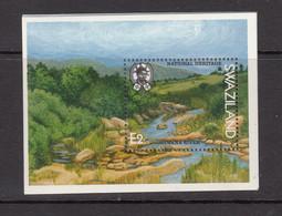 1991 Swaziland National Heritage River  Souvenir Sheet MNH - Swaziland (1968-...)
