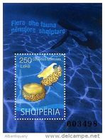 Albania Stamps 2015. Underwater Flora And Fauna. Albania. Cotylorhiza Tuberculata. Block MNH - Albania