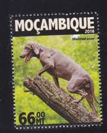 Mozambique 2016 Dog Chien MNH 1V ** - Mozambique