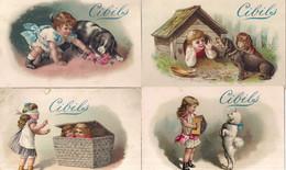 CHROMO CIBILS 1-13-1 (C)-CHILDREN*GRIMMI & HEMPEL-5 STUKS FRANS - Other
