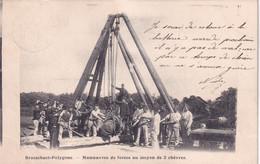 BRASSCHAAT / POLYGONE / MANOEUVRES DE FORCE AU MOYEN DE 2 CHEVRES  1905 - Brasschaat