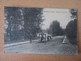Souppes (Seine-Et-Marne) - CPA Avenue De La Sucrerie - Carte Animée (agriculteur Avec Charette), Non-circulée - Souppes Sur Loing