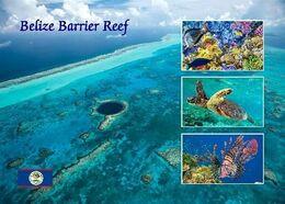 Belize Barrier Reef UNESCO New Postcard - Belize