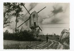 D803 - Olen - Grootformaatkaart 10x15cm - Molen - Moulin - Mill - Mühle - - Olen