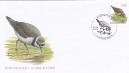 Enveloppe FDC 3267 Oiseau A. Buzin Petit Gravelot Beauraing - 1961-70
