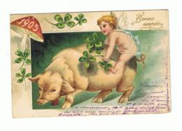 BONNE ANNEE 1905 - Ange, Angelot Sur La Dos D'un Cochon - Trèfle, Champignon- Carte Structurée (1345)fr91 - Anno Nuovo