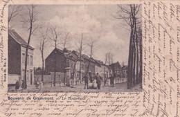 GERAARDSBERGEN / GRAMMONT /   LE BOULEVARD  1901 - Geraardsbergen