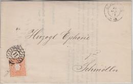 Sachsen - 1/2 Ngr. Wappen Nummerngitterstpl. 11 Brief Altenburg - Schmölln 1867 - Saxony