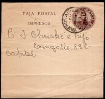 Argentina - 1908 - Faja Postal - Bande Postale - San Martin En Medallon - 2 Ctv - A1RR2 - Ohne Zuordnung