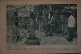 St Louis Du Sénégal - Installation D'une Prise D'eau Dans Un Jardin De Shor - Senegal