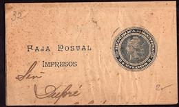 Argentina - Circa 1900 - Faja Postal - Bande Postale - Republica En Medallon - 2 Ctv - A1RR2 - Briefe U. Dokumente