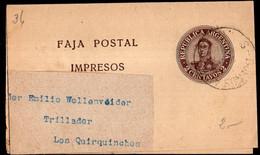 Argentina - Circa 1910 - Faja Postal - Bande Postale - San Martin En Medallon - 2 Ctv - A1RR2 - Briefe U. Dokumente