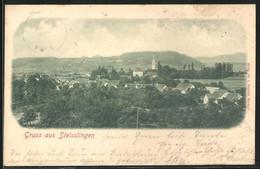 AK Steisslingen, Ausblick Zum Dorf - Non Classés