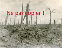 PHOTO ALLEMANDE FAR 112 - UN ASPECT DU BOIS DE MALANCOURT PRES ESNES EN ARGONNE MEUSE - GUERRE 1918 - 1914-18