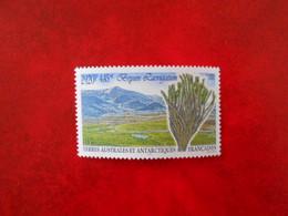 TAAF YT 293 FLORE ANTARTIQUE** - Unused Stamps