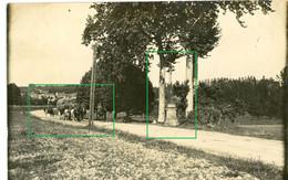 14-18.WWI Allemande Carte Photo.13 RD.Regio Aisne Meuse ? Cerney.Chamouille.Chivy.Tranchee (8-18) - Guerra 1914-18