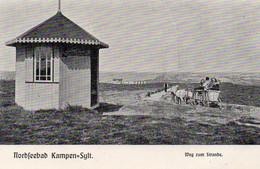 DC3406 - Ak Sylt Nordseebad Kampen Weg Zum Strande - Sylt