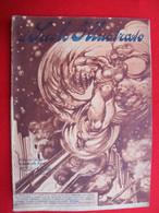 RIVISTA - IL SECOLO ILLUSTRATO N°2  Del GENNAIO  1918 - War 1914-18