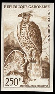 GABON (1963) Crowned Hawk-eagle. Trial Color Proof. Scott No C16. Yvert No PA16. - Gabon (1960-...)