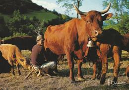 15 CANTAL  La Traite Des Vaches SALERS - Other Municipalities
