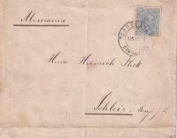 ESPAGNE 1891 LETTRE DE TORRELAVEGA - Briefe U. Dokumente