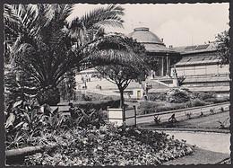Belgien Bruxelles  AK 1961 Jardin Botanique MWSt. Bezoekt Europlastica 61 Te Gent Van 16 Tot 25 Juni - Cartas