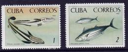 CUBA - Faune, Poissons - Y&T N° 935-941 - MNH - 1964 - Neufs