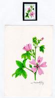 2004 URUGUAY Original Artwork Painting -medicinal Plant Malva Yuyos Medicine Flower Fleur - Artist M.Freire-Yv 2166 - Uruguay