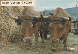 15  PAIRE DE BOEUFS AUBRAC  AU TRAVAIL    Edition Buffier - Other Municipalities