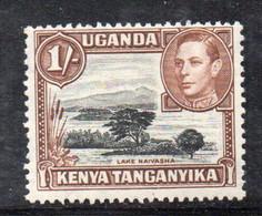 XP4620 - KENYA UGANDA TANGANYKA 1938 , 1 Sh SG N. 145b Dent 13 X 12 1/2 * Linguellato (2380) - Kenya, Uganda & Tanganyika