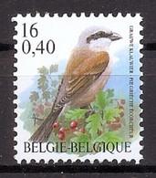 BELGIE * Buzin * Nr 2885 * Postfris Xx * DOF FLUOR  PAPIER - 1985-.. Vogels (Buzin)