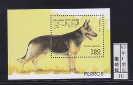 Sahara1995 Dog Chien 1SS ** - Autres - Afrique