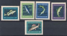 POLEN / POLAND / POLSKA  -  1958  ,  Fische , Fishes   -   Michel  1051-1055   MNH / ** - Unused Stamps