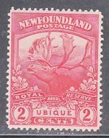NEWFOUNDLAND    SCOTT NO 116    MINT HINGED  YEAR 1919 - 1908-1947