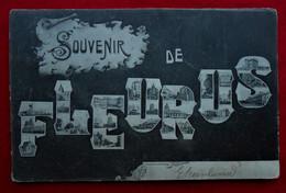 CPA Souvenir De Fleurus - Fleurus